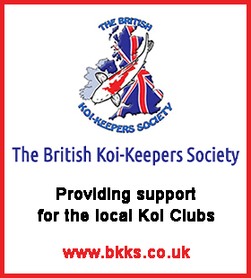 BKKS Logo